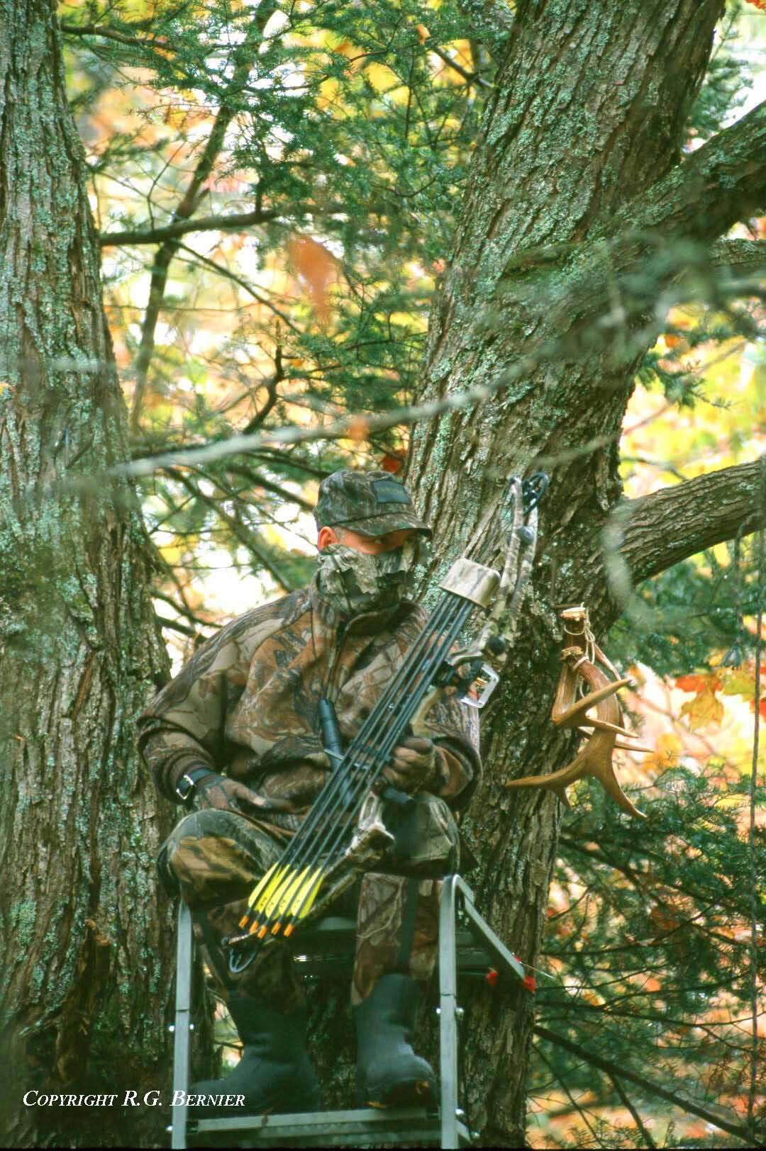 Shooting Target Stand Designs : A bowhunter s success tree stand or ground attack