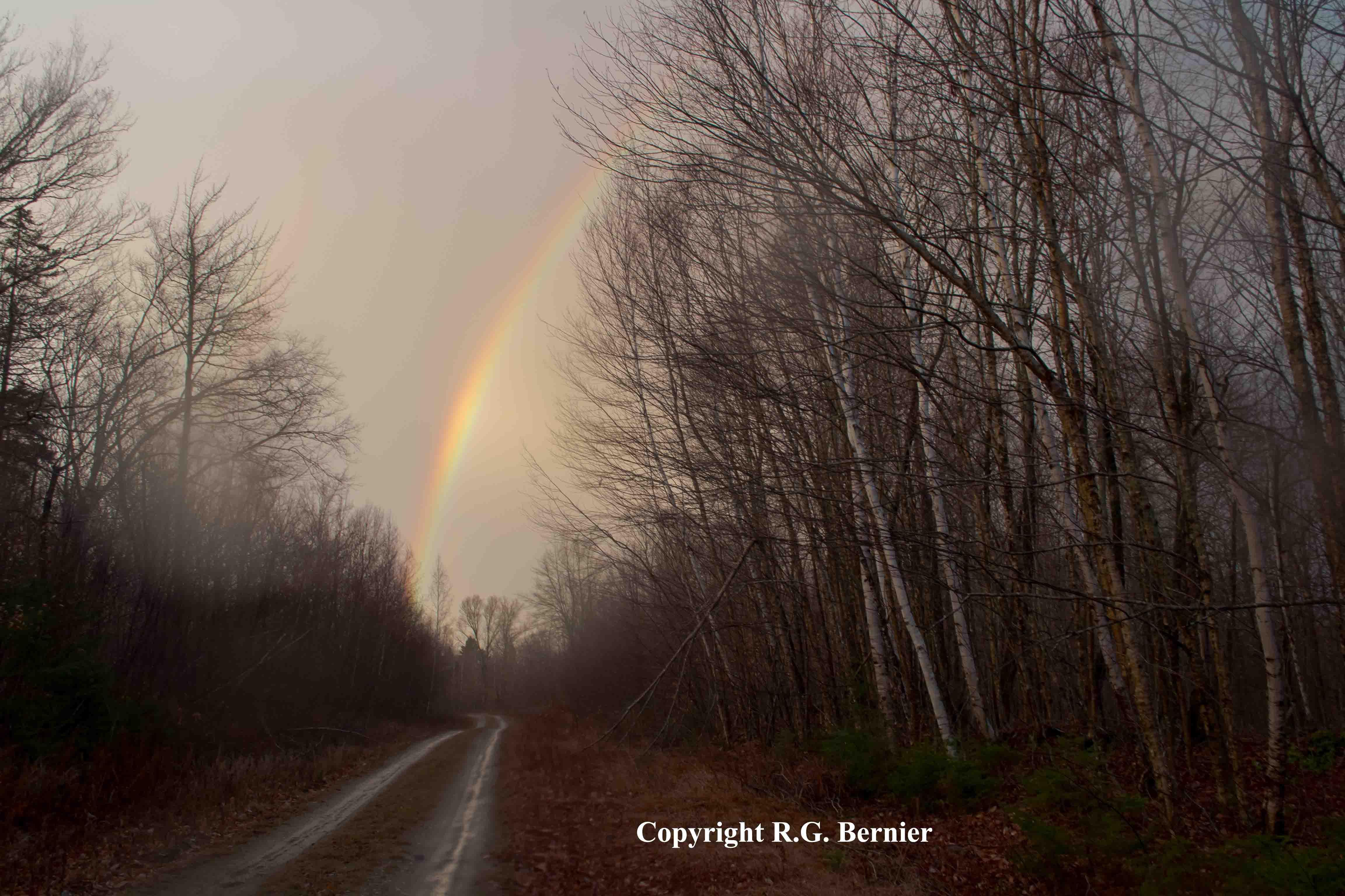 dsc_0150 Verwunderlich so where Over the Rainbow Dekorationen