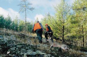 Hunting partners - 4